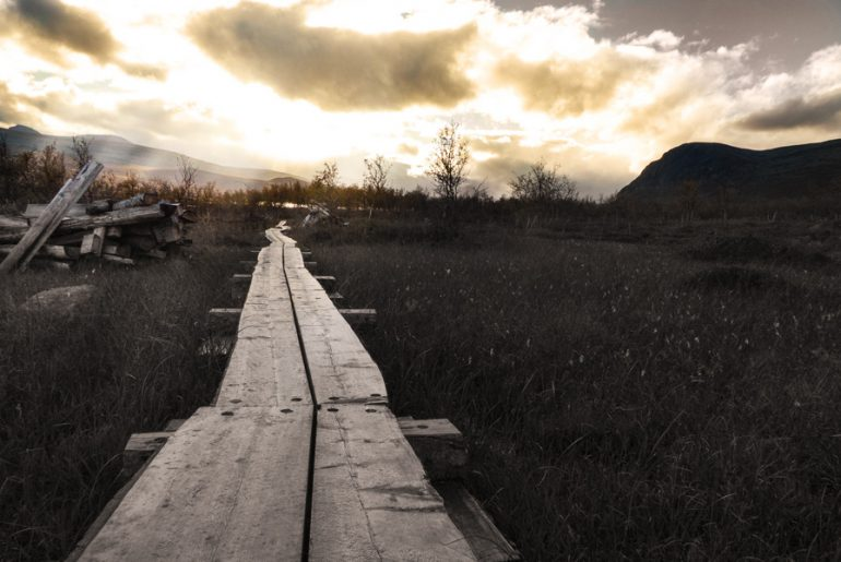 Pfad-wandern-trekking